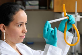womeninsciencedaybanner_february2020_960x640